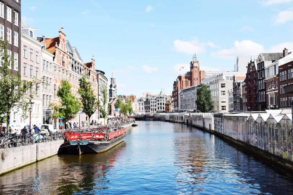WHAT TO DO IN AMSTERDAM!