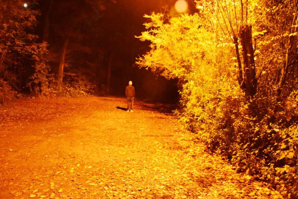 WayGuard: Dein virtueller Buddy auf finsteren Wegen!